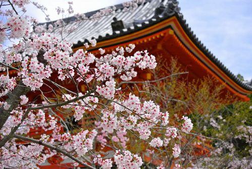 日本の世界遺産_いったことある京都