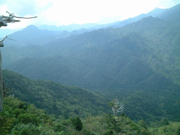 太鼓岩からの風景