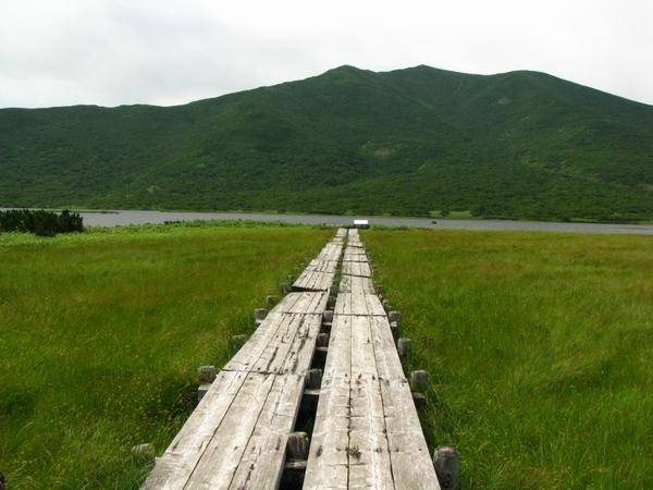 羅臼湖に続く道