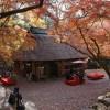 日本の世界遺産_奈良公園紅葉